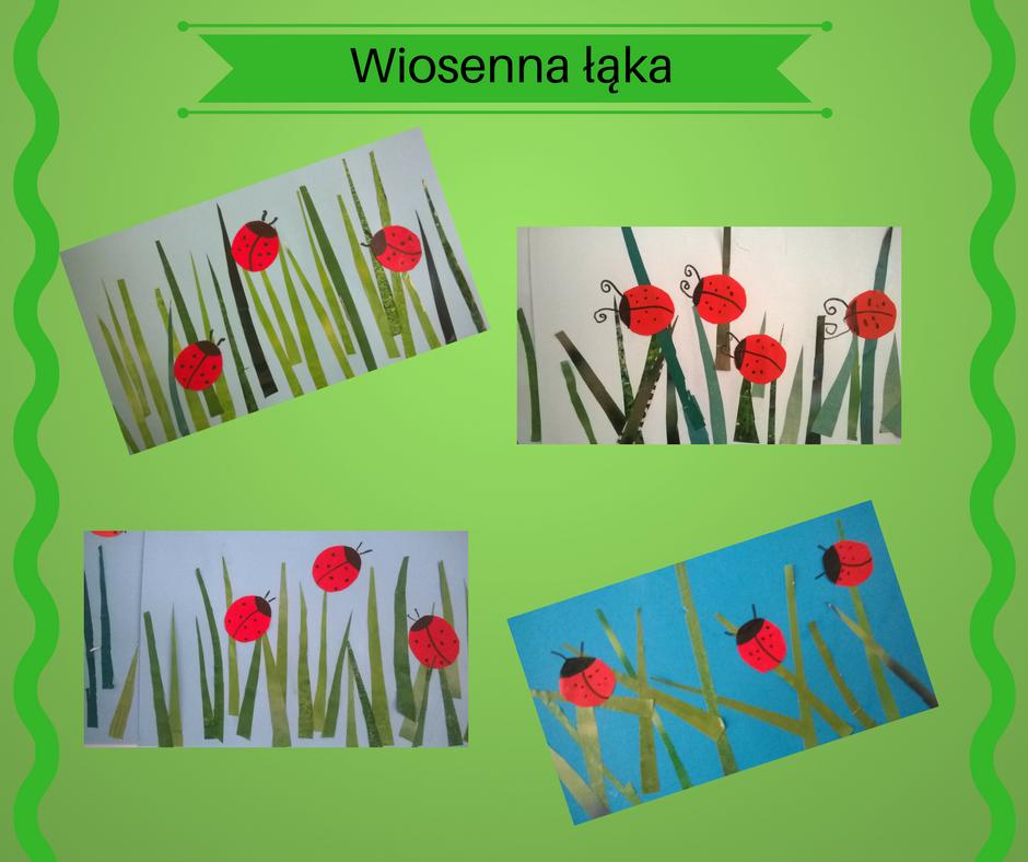 Galeria zdjęć-Wiosenna łąka