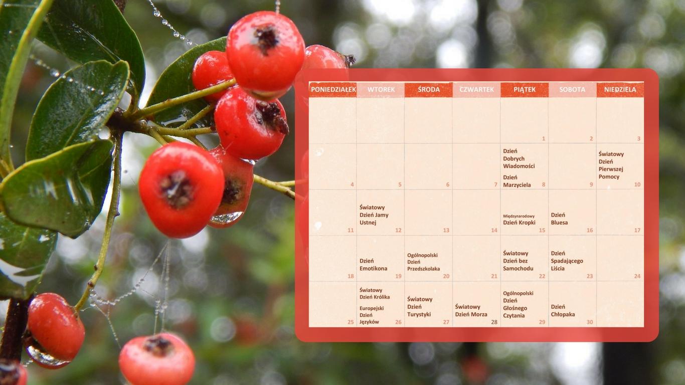 Kalendarz świąt nietypowych - wrzesień - nr5